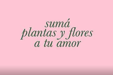 Plantas y Flores en el mes de los Enamorados !!!