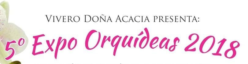 5ta Exposición de Orquídeas, Cactus y Exóticas!