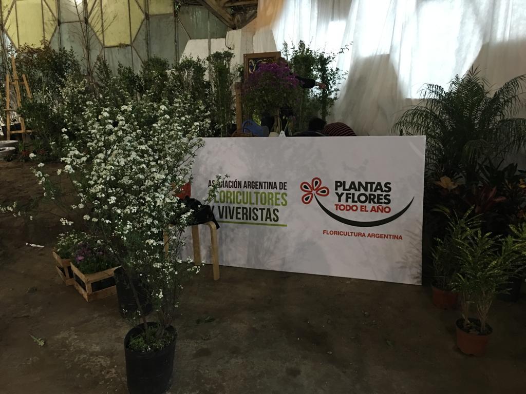 Las flores y plantas de todo el país!!!