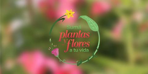 Un motivo más para comprar Plantas y Flores