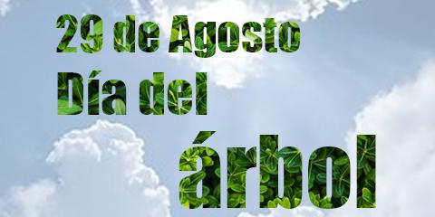 29 de Agosto – Día del Árbol