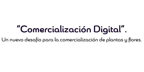 Charlas de Comercialización Digital