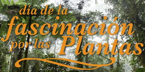 18 de mayo, día de la Fascinación por las plantas.