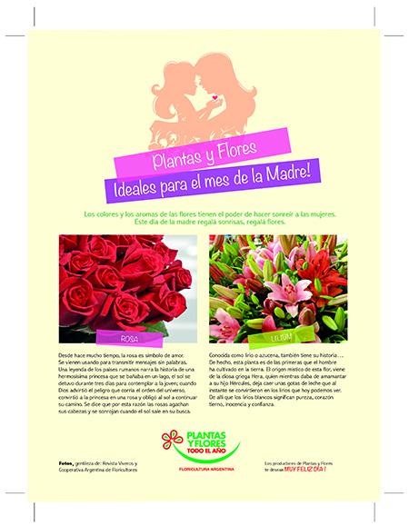 Publicidad en Revista CARAS