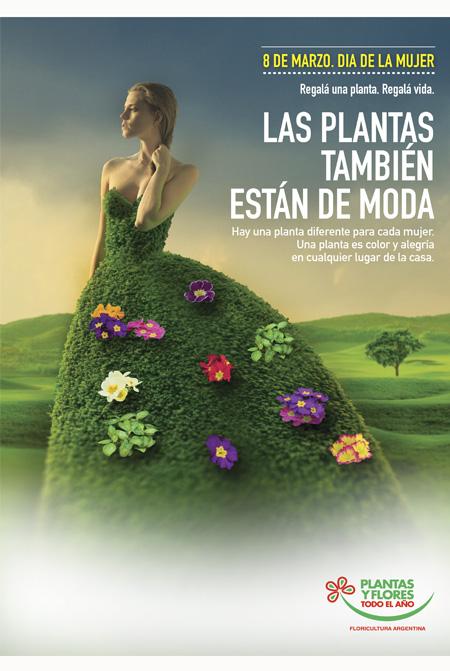 Las plantas también están de moda